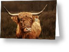 Scottish Moo Coo - Scottish Highland Cattle Greeting Card by Christine Till