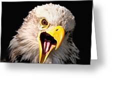 Screaming Eagle II Black Greeting Card