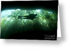 Scuba Diver In The Cavern Part Greeting Card by Karen Doody