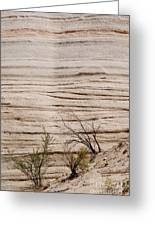 Sculpted By Nature Greeting Card