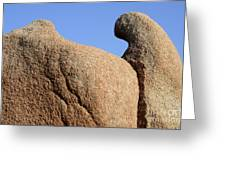 Sculpted Rock Greeting Card