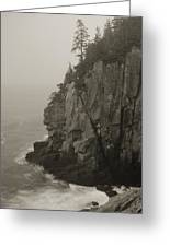 Sea Cliff At Quoddy Head  Greeting Card