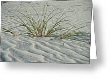 Sea Grass Greeting Card