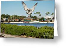 Sea Gull With Full Flaps Greeting Card