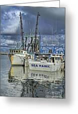 Sea Hawk Under Cover Greeting Card