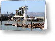 Sea Lions At Pier 39 San Francisco California . 7d14294 Greeting Card