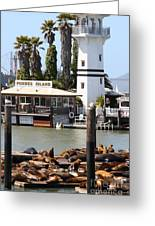 Sea Lions At Pier 39 San Francisco California . 7d14296 Greeting Card by Wingsdomain Art and Photography
