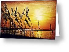 Sea Oat Sunrise Greeting Card