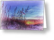 Sea Oats 5 Greeting Card