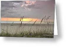 Sea Oats - Boca Grande Greeting Card
