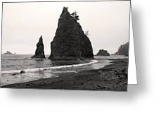 Sea Stacks In The Fog Greeting Card
