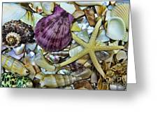 Sea Treasure - Landscape Greeting Card