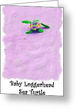Sea Turtle Escape Card Greeting Card