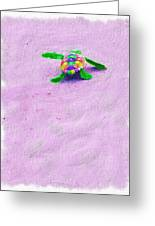 Sea Turtle Escape Greeting Card