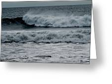 Seagull And Surf Greeting Card