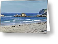 Seal Bay Beach Greeting Card