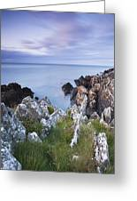 Seascape From Coast Of Clogherhead Greeting Card