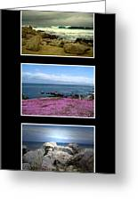 Seascape Triptych Greeting Card