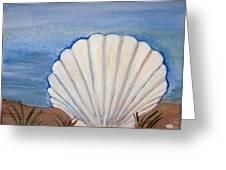 Seashell Greeting Card