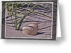 Seashore Scene Greeting Card