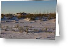 Seaside Dunes 4 Greeting Card