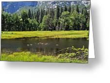 Seasonal Duck Pond Greeting Card