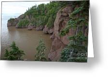 Seastacks At Hopewell Rocks Greeting Card