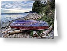 Seaworthy Greeting Card by Diana Cox