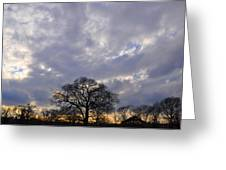 Sedgeley Tree Greeting Card