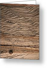 Sedimentary Structures In Sand Beds Greeting Card