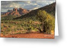 Sedona Red Rock Viewpoint Greeting Card
