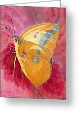 Self Esteem Butterfly Greeting Card