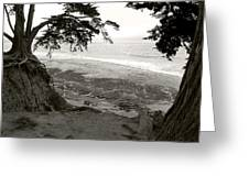 Sentinels View Of The Ocean Black And White Greeting Card