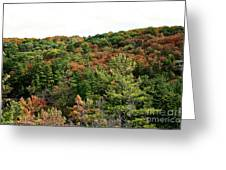 September Palate Greeting Card