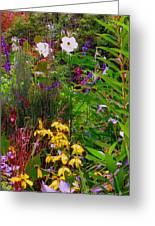 September Wildflowers Greeting Card