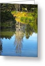Serene Reflection Greeting Card