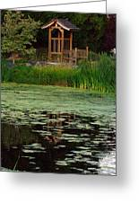 Serene Reflections Greeting Card