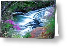 Serenity Flowing Greeting Card
