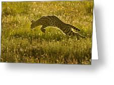 Serval Cat Pouncing Serengeti Greeting Card