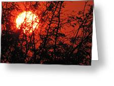 Setting Of The Day Greeting Card