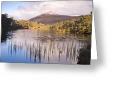 Sgurr Na Lapaich From Loch Salach A Ghiubhais In Glen Affric Greeting Card
