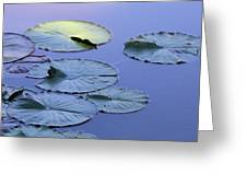 Shades Of Tranquility Greeting Card