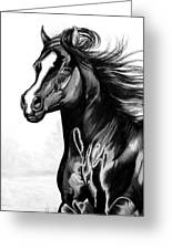 Shading Of A Horse In Bic Pen Greeting Card