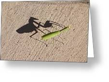 Shadow Mantis Greeting Card