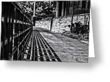 Shadow Walk Greeting Card