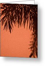 Shadows Of A Palm Greeting Card