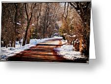 Shadowy Path Greeting Card