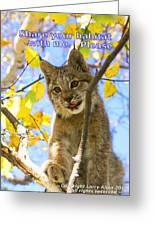 Share Your Habitat Greeting Card