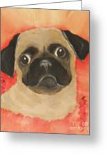 She Has Her Eye On You Greeting Card
