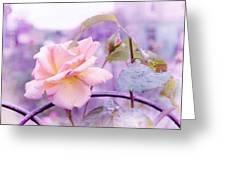 She Like The Ghost Beside Me. Scottish Rose Greeting Card